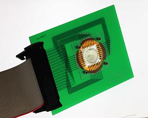 Ученые создали панорамную цифровую камеру, идея которой позаимствована у живой природы