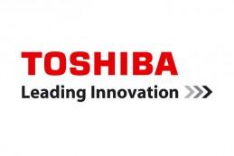 Компания Toshiba объявила о создании органического тонкопленочного фотогальванического модуля размерами 5 х 5 см