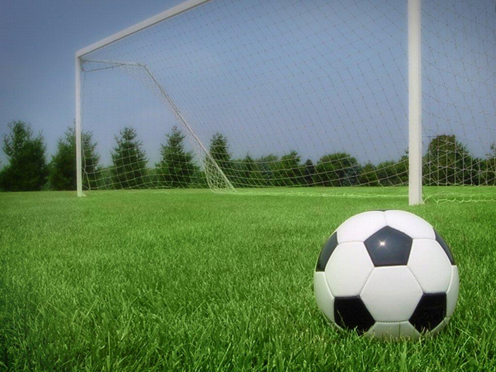 Как быстро создать собственную футбольную площадку