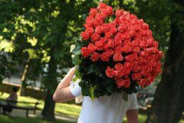Как выбрать розы для девушки: о чем говорит цвет?
