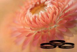 Набор макрофильтров Lensbaby за $50