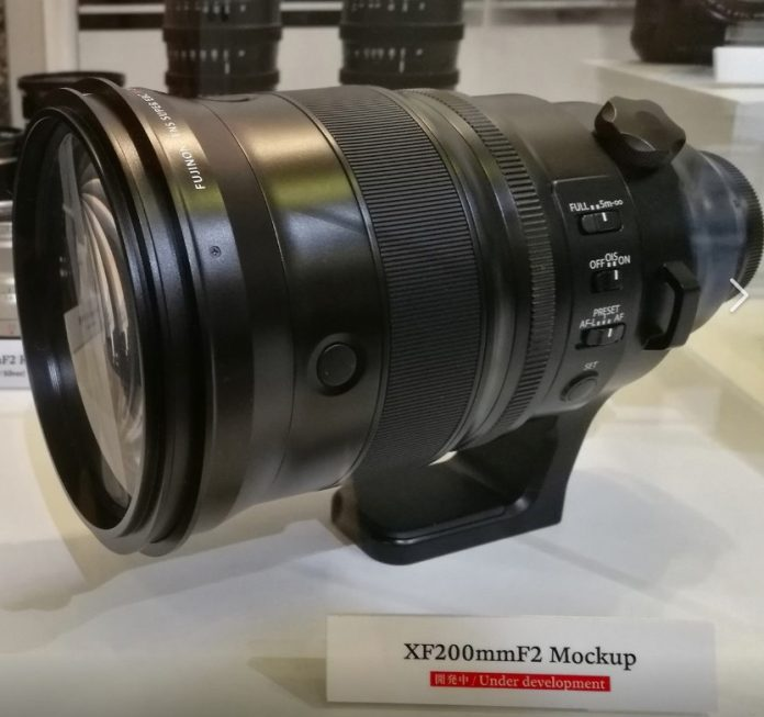 Год больших объективов. Fuji 200mm и Sony 400mm
