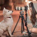 В кадре - движение. 5 советов новичкам для правильной фотосъемки