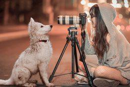 В кадре — движение. 5 советов новичкам для правильной фотосъемки