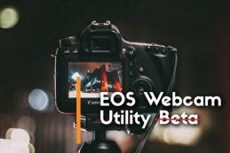Canon EOS Webcam Utility — теперь официально